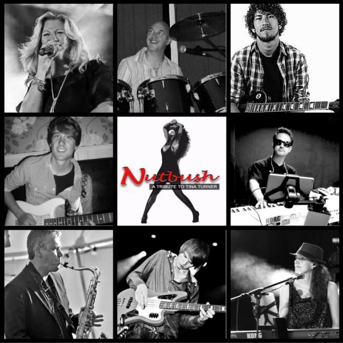 tina-turner-tribute-band-nutbush-hoe-het-begon